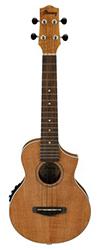 ibanez ukulele