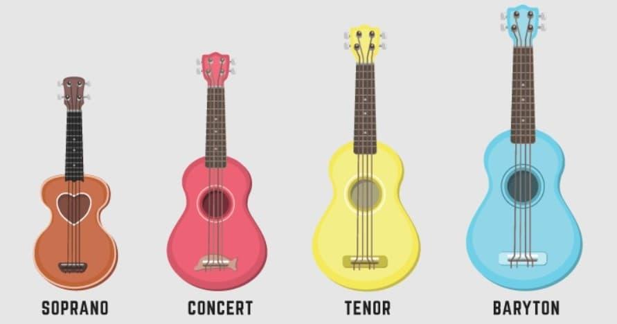 taille de ukulele 1