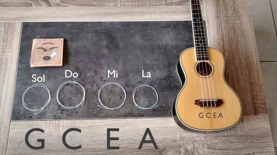 ukulele corde